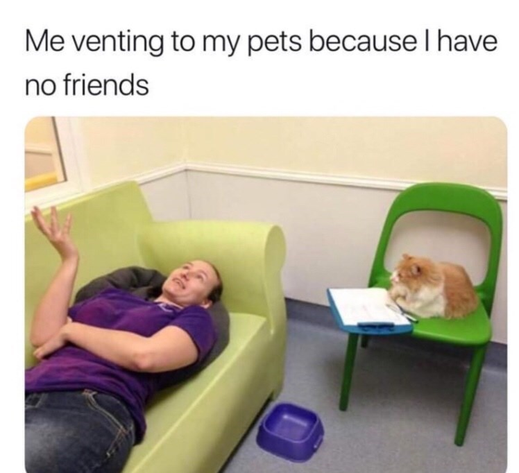 Product - Me venting to my pets because I have no friends