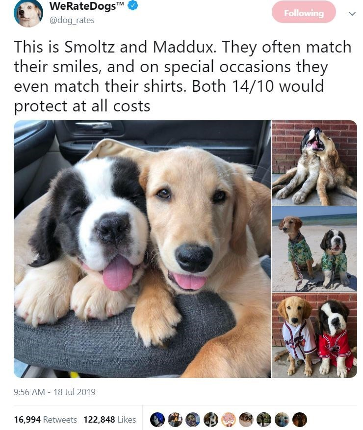 Dog - WeRateDogsTM @dog rates Following This is Smoltz and Maddux. They often match their smiles, and on special occasions they even match their shirts. Both 14/10 would protect at all costs 9:56 AM 18 Jul 2019 16,994 Retweets 122,848 Likes