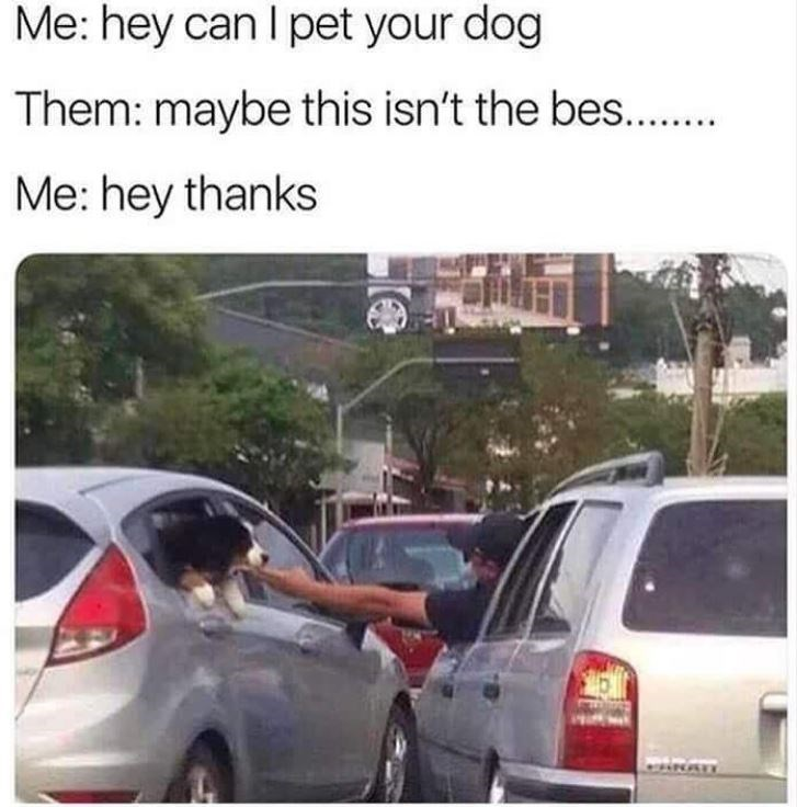 memes - Motor vehicle - Me: hey can I pet your dog Them: maybe this isn't the bes.. Me: hey thanks DHNA