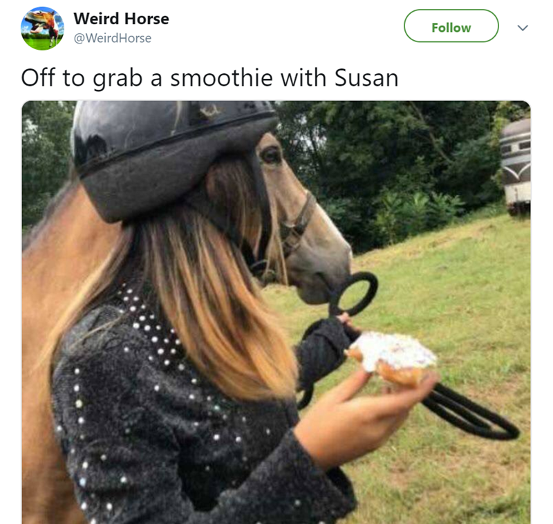 Horse - Weird Horse Follow @WeirdHorse Off to grab a smoothie with Susan