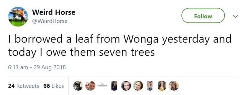 Text - Weird Horse Follow @WeirdHorse I borrowed a leaf from Wonga yesterday and today I owe them seven trees 6:13 am - 29 Aug 2018 24 Retweets 66 Likes