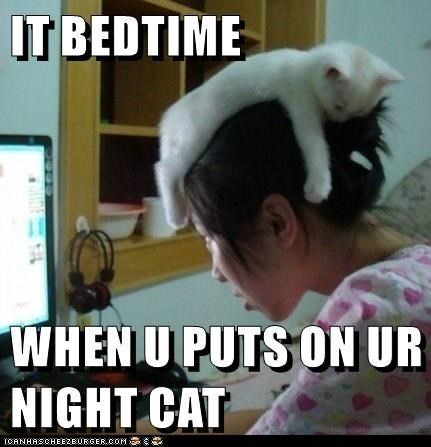 Photo caption - IT BEDTIME WHEN UPUTSON UR NIGHT CAT CANHRSCHEEZEURGER.COM
