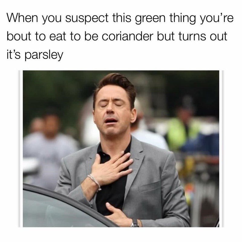 Text - When you suspect this green thing you're bout to eat to be coriander but turns out it's parsley