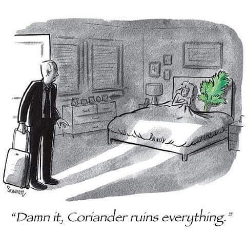 "Cartoon - SoMnert ""Damn it, Coriander ruins everything."