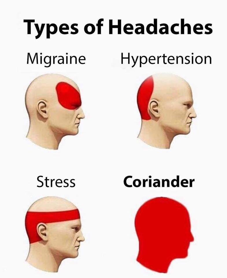 Face - Types of Headaches Migraine Hypertension Coriander Stress
