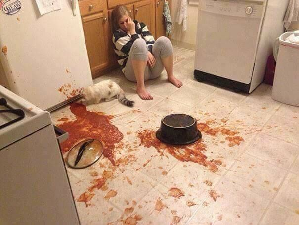 Funny picture of someone who dropped a pot of pasta sauce all over the kitchen floor