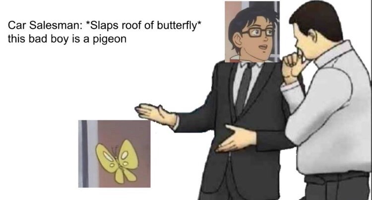 "Meme - ""Car Salesman: *Slaps roof of butterfly* this bad boy is a pigeon"""