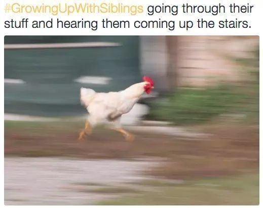 Chicken - #GrowingUpWithSiblings going through thei stuff and hearing them coming up the stairs.