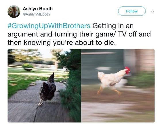 Chicken - Ashlyn Booth @AshlynMBooth Follow #GrowingUpWith Brothers Getting in an argument and turning their game/ TV off and then knowing you're about to die.