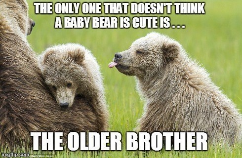 Vertebrate - THE ONLY ONE THAT DOESNT THINK A RABY BEARIS CUTE IS.. THE OLDER BROTHER imgflip com