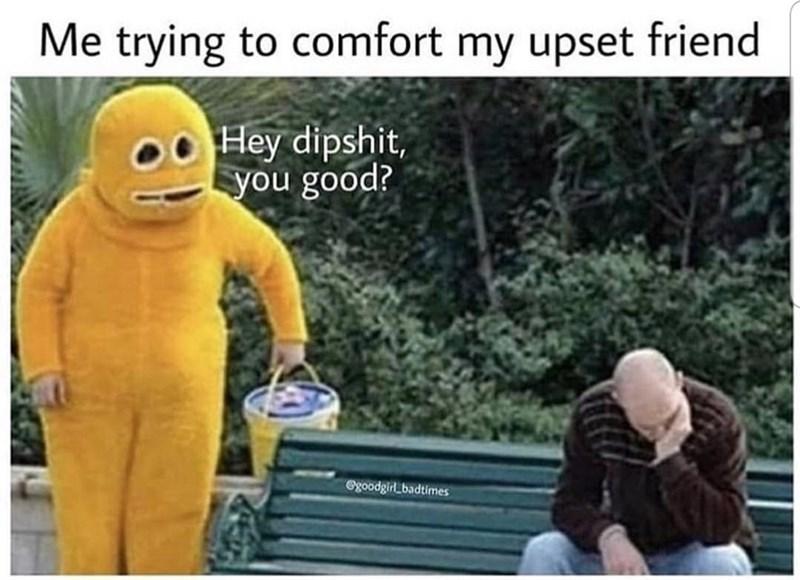 Text - Me trying to comfort my upset friend Hey dipshit, you good? egoodgirl badtimes