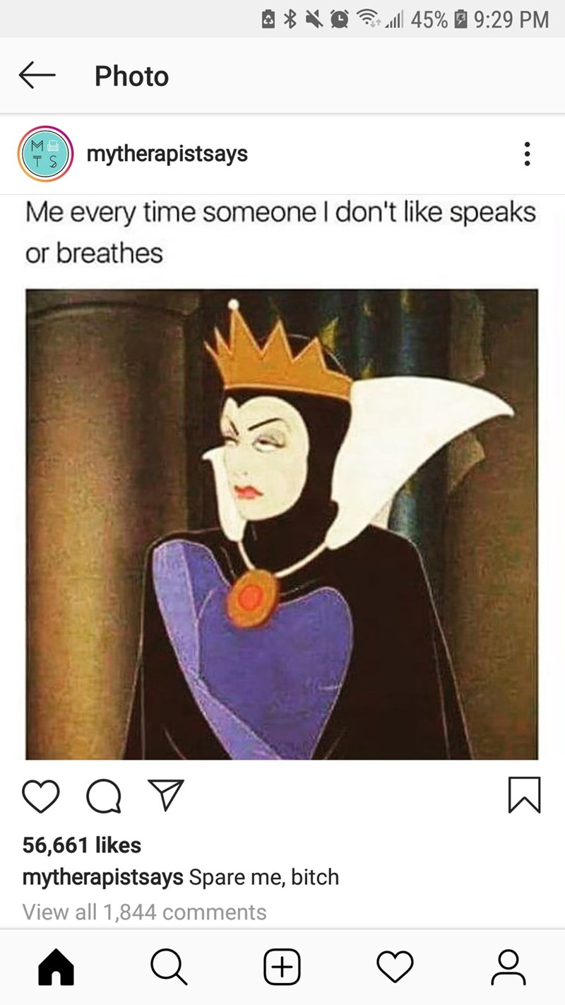 Text - 45% 9:29 PM Photo mytherapistsays T S Me every time someone I don't like speaks or breathes 56,661 likes mytherapistsays Spare me, bitch View all 1,844 comments + oC