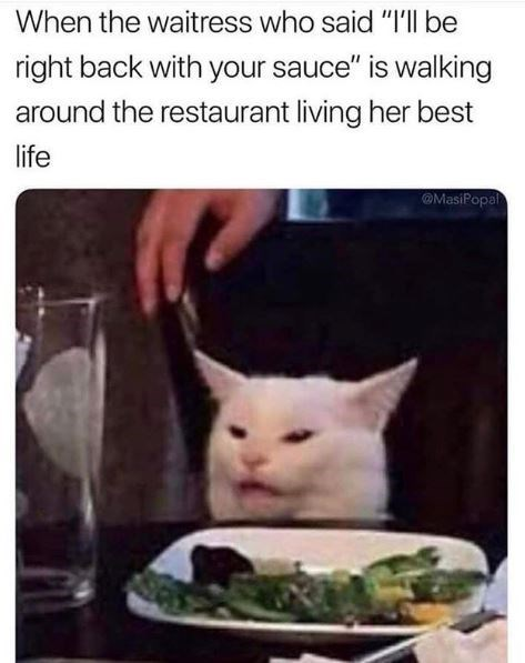 "Cat - When the waitress who said ""I'l be right back with your sauce"" is walking around the restaurant living her best life MasiPopal"