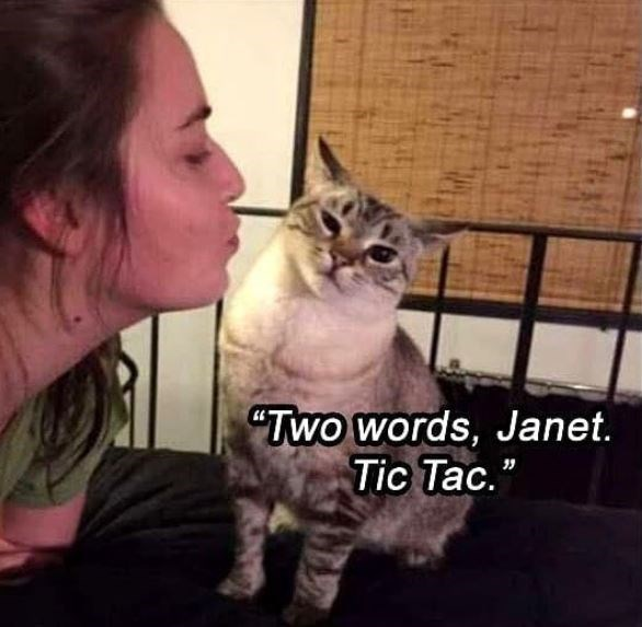 "Cat - ""Two words, Janet. Tic Tac."""