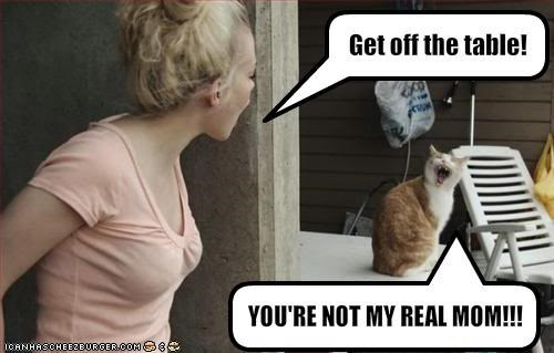 Internet meme - Get off the table! YOU'RE NOT MY REAL MOM!!! CANHASCHE120URGER CO0 e