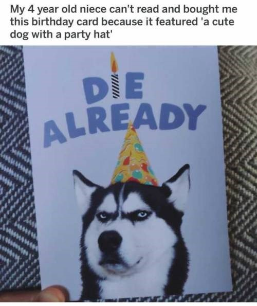 birthday card with a cute dog in a party hat and text about dying