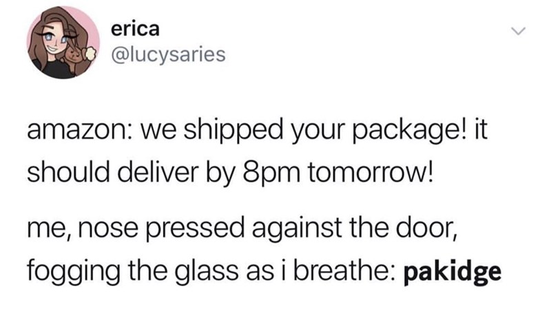 funny tweet - Text - erica @lucysaries amazon: we shipped your package! it should deliver by 8pm tomorrow! me, nose pressed against the door, fogging the glass as i breathe: palkidge