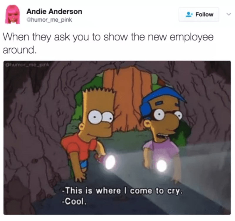 Cartoon - Andie Anderson Follow @humor_me_pink When they ask you to show the new employee around. Ohun umor_me pink This is where I come to cry. Cool.