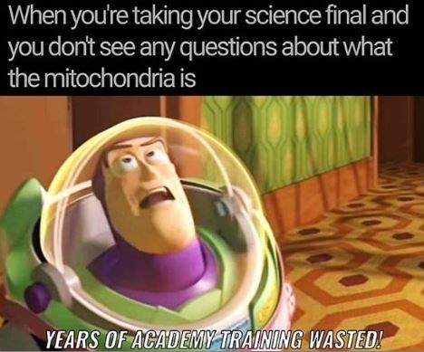 Organism - When you're taking your science final and you don't see any questions about what the mitochondria is YEARS OF ACADEMY TRAINING WASTED!