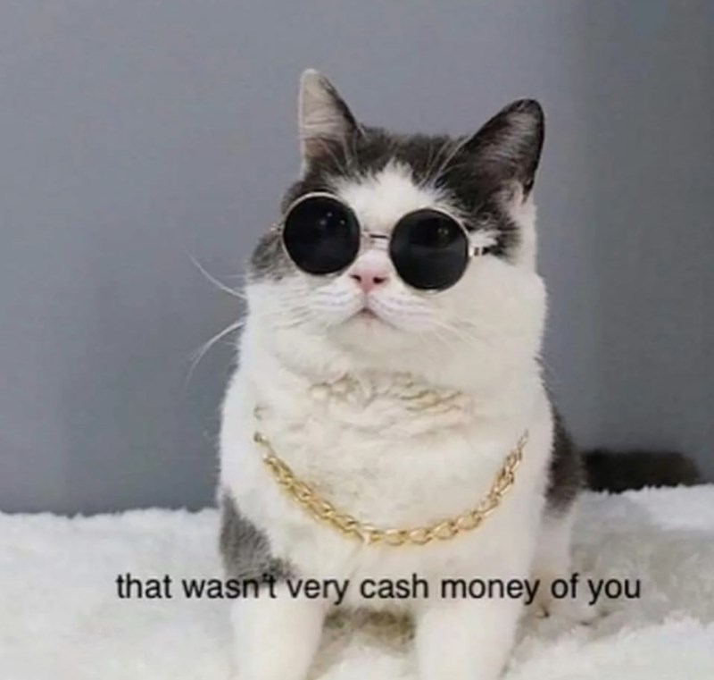 Cat - that wasn't very cash money of you