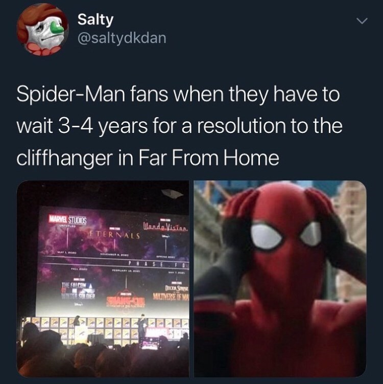 Text - Salty @saltydkdan Spider-Man fans when they have to wait 3-4 years for a resolution to the cliffhanger in Far From Home MARVEL STUDIOS MandVision UNTITLED fTERNALS MAY L PALL THE FALCOM DICEA SIE MUTMERE OF MA NTER SOLONER