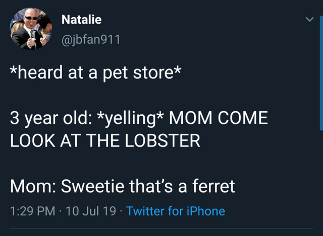 Text - Natalie @jbfan911 *heard at a pet store* 3 year old: *yelling* MOM COME LOOK AT THE LOBSTER Mom: Sweetie that's a ferret 1:29 PM 10 Jul 19 Twitter for iPhone