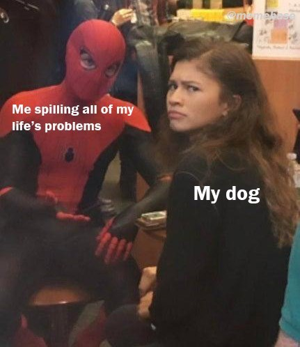 "Meme - ""Me spilling all of my life's problems; My dog"""