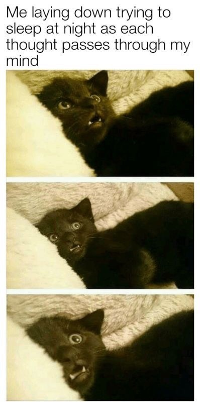 Black cat - Me laying down trying to sleep at night as each thought passes through my mind