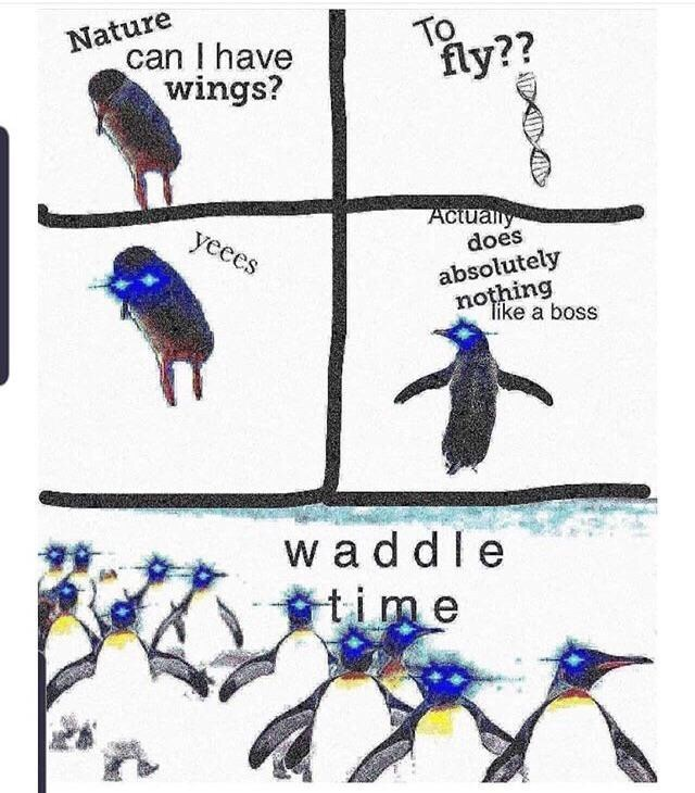 Bird - Nature can I have wings? To ly?? Actually does yeces absolutely nothing like a boss w addle ttime