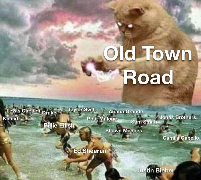 Adaptation - Old Town Road Taylor Swift Lewis Capaldi Drake Khalid Ariana Grande Post Malone Sam Smithonas Brothers Bilie Eilish Shawn Mendes Camila Cabello Ed Sheeran Justin Bieber