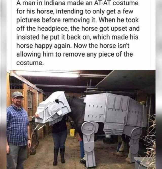 Adaptation - A man in Indiana made an AT-AT costume for his horse, intending to only get a few pictures before removing it. When he took off the headpiece, the horse got upset and insisted he put it back on, which made his horse happy again. Now the horse isn't allowing him to remove any piece of the costume.