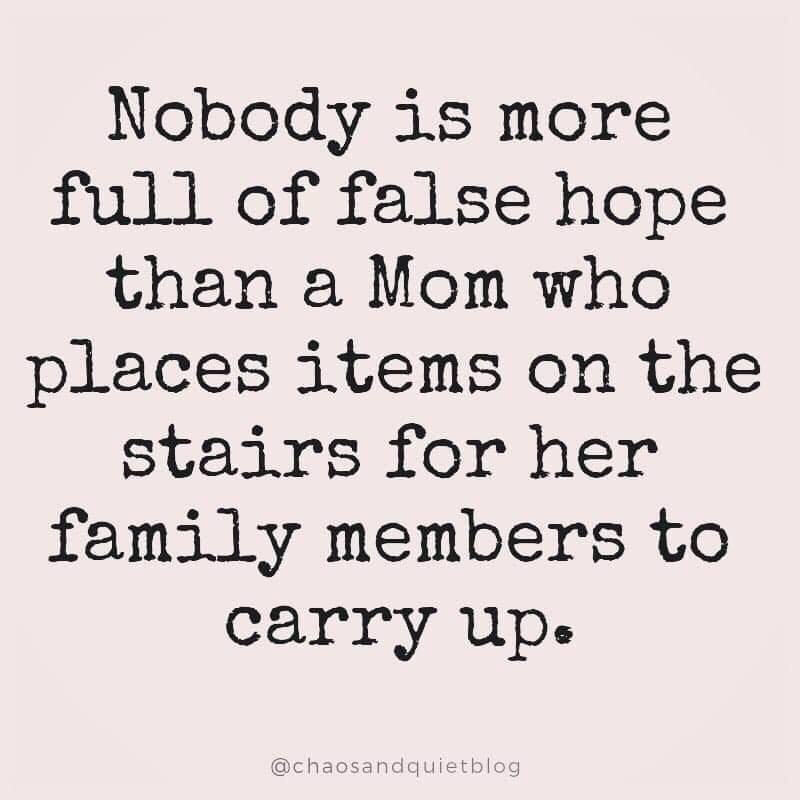 Text - Nobody is more full of false hope than a Mom who places items on the stairs for her family members to carry up @chaosandquietblog