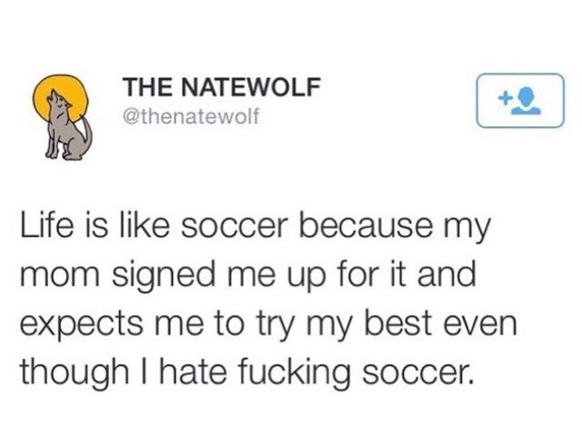 Text - THE NATEWOLF @thenatewolf Life is like soccer because my mom signed me up for it and expects me to try my best even though I hate fucking soccer.
