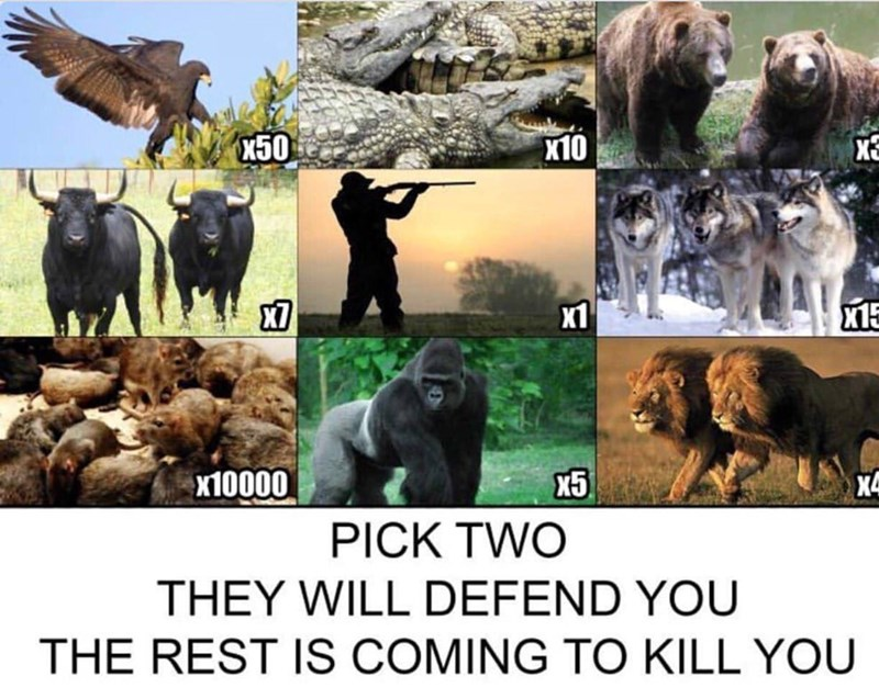 Canidae - X50 X10 X1 x10000 X4 PICK TWO THEY WILL DEFEND YOU THE REST IS COMING TO KILL YOU