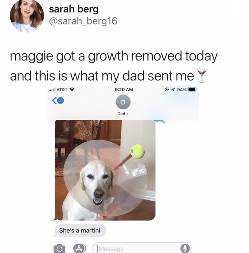 Nose - sarah berg @sarah_berg16 maggie got a growth removed today and this is what my dad sent me il AT&T 94% 9:20 AM 2 Dad> She's a martini A Message