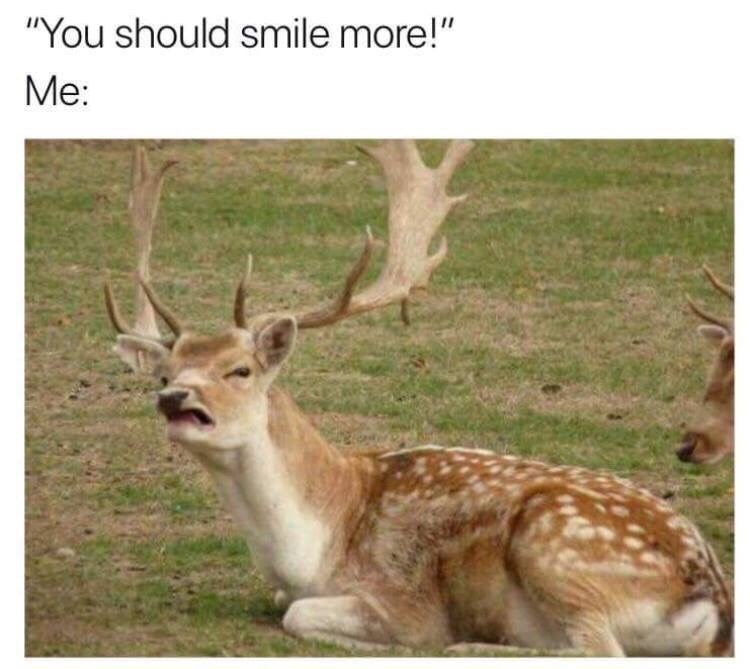 """Wildlife - """"You should smile more!"""" Me:"""