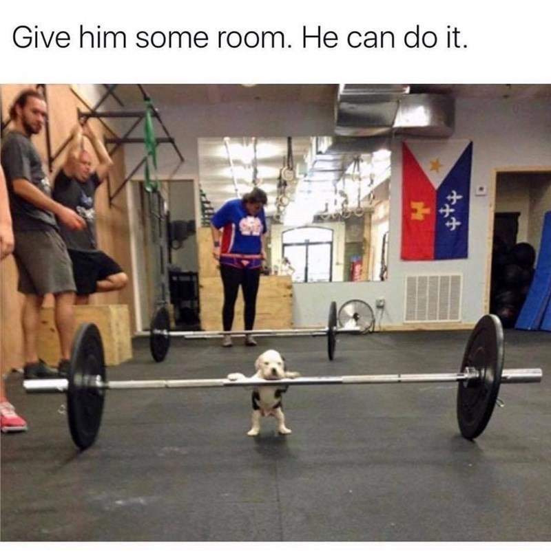Physical fitness - Give him some room. He can do it.