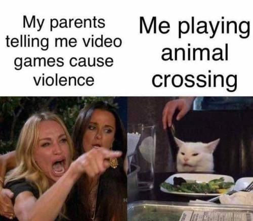Facial expression - Me playing My parents telling me video animal games cause violence crossing