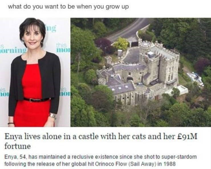 Landmark - what do you want to be when you grow up ng this mo orning is S Enya lives alone in a castle with her cats and her £91M fortune Enya, 54, has maintained a reclusive existence since she shot to super-stardom following the release of her global hit Orinoco Flow (Sail Away) in 1988
