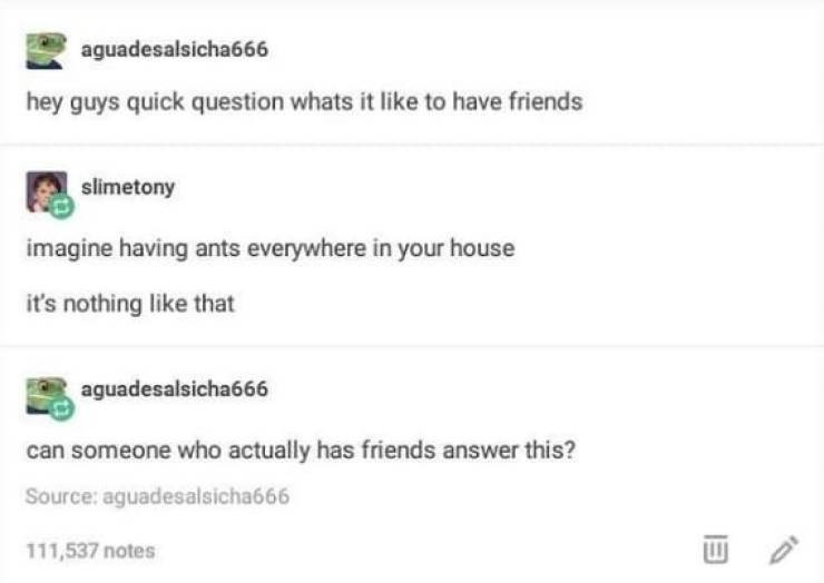 Text - aguadesalsicha666 hey guys quick question whats it like to have friends slimetony imagine having ants everywhere in your house it's nothing like that aguadesalsicha666 can someone who actually has friends answer this? Source: aguadesalsicha666 111,537 notes
