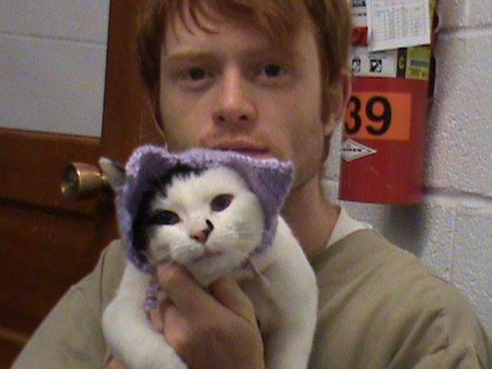 prison cats - Cat - 39