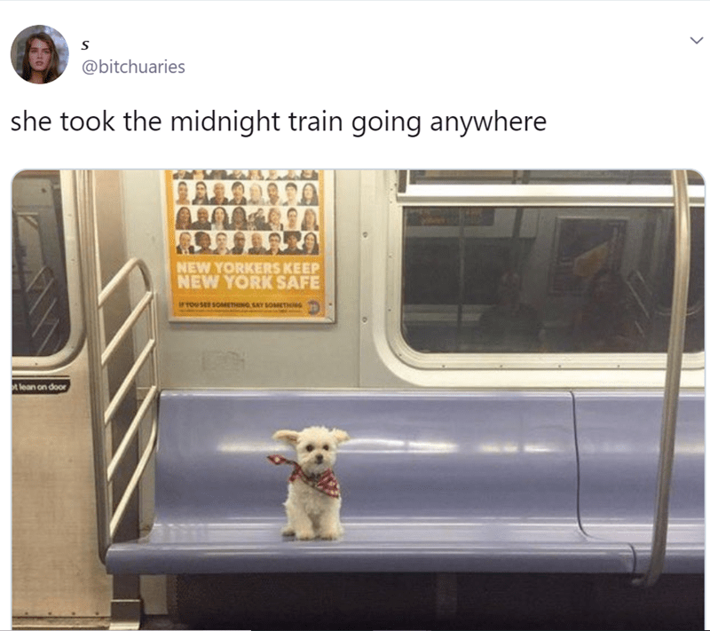Transport - @bitchuaries she took the midnight train going anywhere NEW YORKERS KEEP NEW YORK SAFE iTOU SE SOMETHING SAY SOMETHNG t lean on door