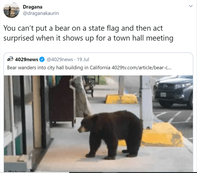 Bear - Dragana @draganakaurin You can't put a bear on a state flag and then act surprised when it shows up for a town hall meeting @4029news 19 Jul 4029news Bear wanders into city hall building in California 4029tv.com/article/bear-c..