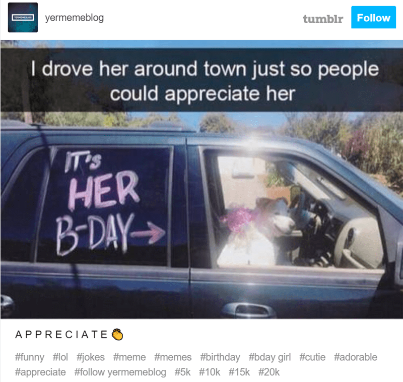 Vehicle - yermemeblog YERHEMERLOS tumblr Follow I drove her around town just so people could appreciate her IT's HER BDAY APPRECI ATE #funny #l #okes #meme #memes #birthday #bday girl #cutie #adorable #appreciate #follow yermemeblog #5k #10k # 15k # 20k
