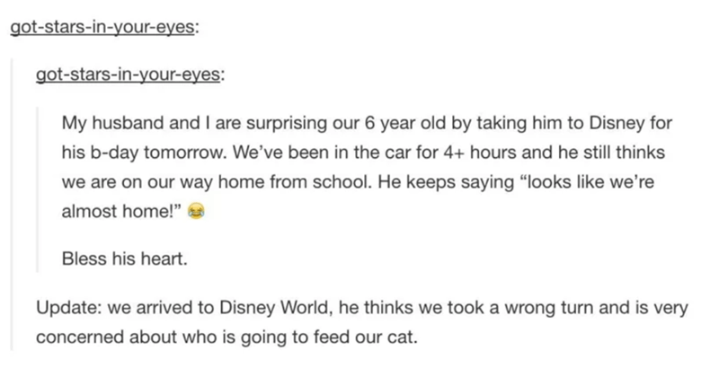 """Text - got-stars-in-your-eyes: got-stars-in-your-eyes: My husband and I are surprising our 6 year old by taking him to Disney for his b-day tomorrow. We've been in the car for 4+ hours and he still thinks we are on our way home from school. He keeps saying """"looks like we're almost home!"""" Bless his heart. Update: we arrived to Disney World, he thinks we took a wrong turn and is very concerned about who is going to feed our cat."""