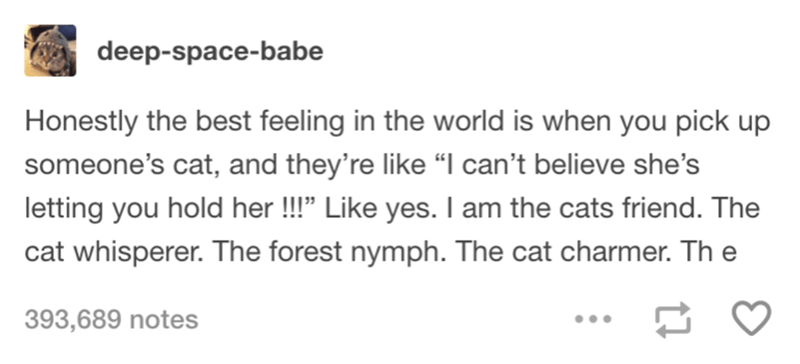 """Text - deep-space-babe Honestly the best feeling in the world is when you pick up someone's cat, and they're like """"I can't believe she's letting you hold her!"""" Like yes. I am the cats friend. The cat whisperer. The forest nymph. The cat charmer. The 393,689 notes"""