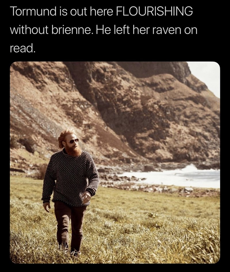 meme - Text - Tormund is out here FLOURISHING without brienne. He left her raven on read.