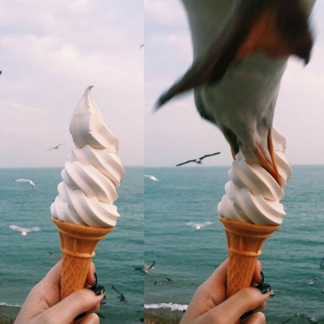 Soft Serve Ice Creams