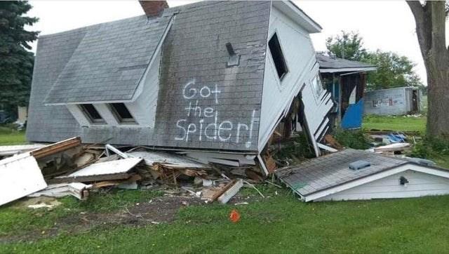 Home - Got the SPider