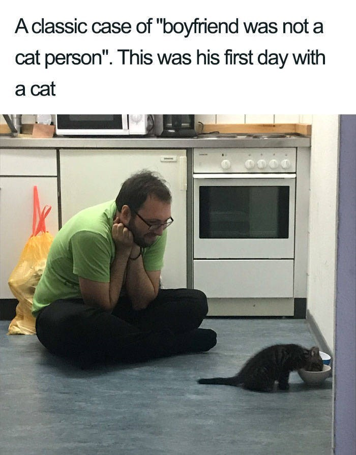 """Text - A classic case of """"boyfriend was not a cat person"""". This was his first day with a cat"""